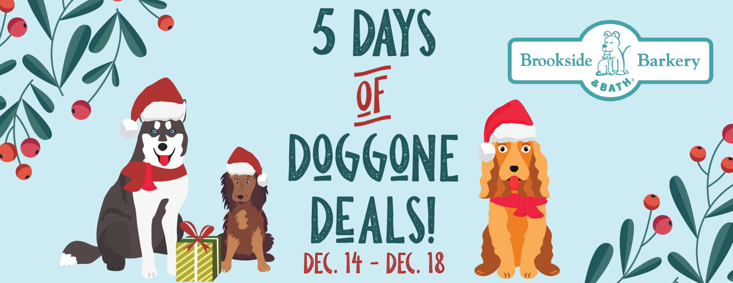 Plan Your Shopping for 5 Days of Deals!