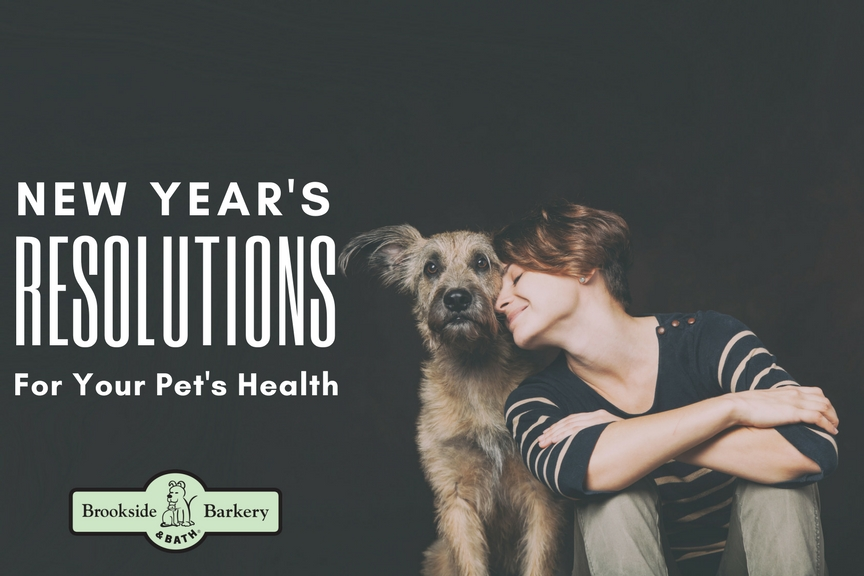 New Year's Resolutions for Your Pet's Health