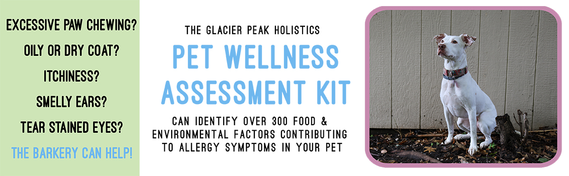 Wellness Kit Web copy
