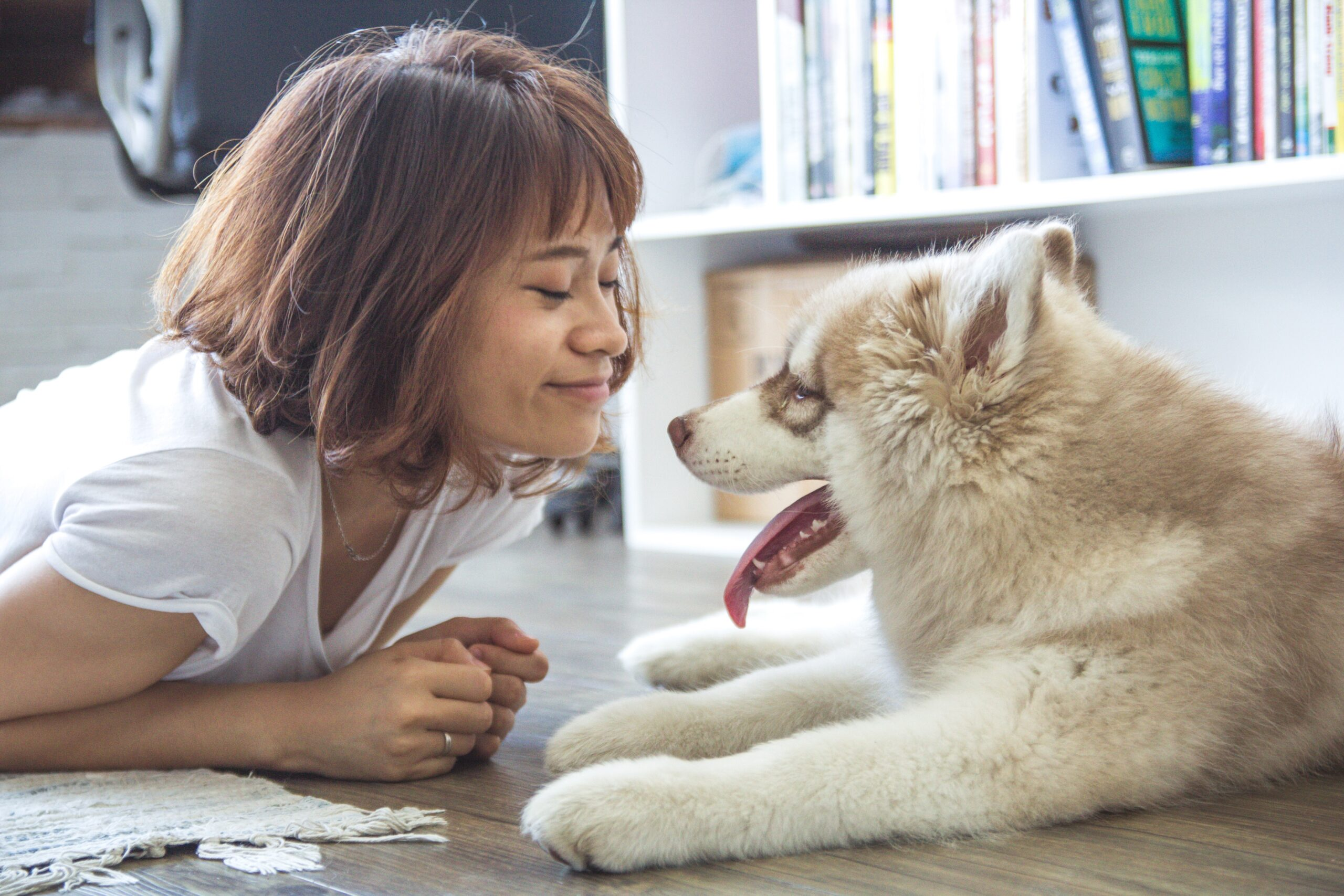February is Pet Dental Health Month – 25% Off Dental Products + More!