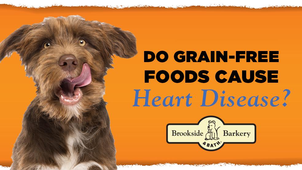 Dr. Dodson on Grain-Free Foods & Heart Disease