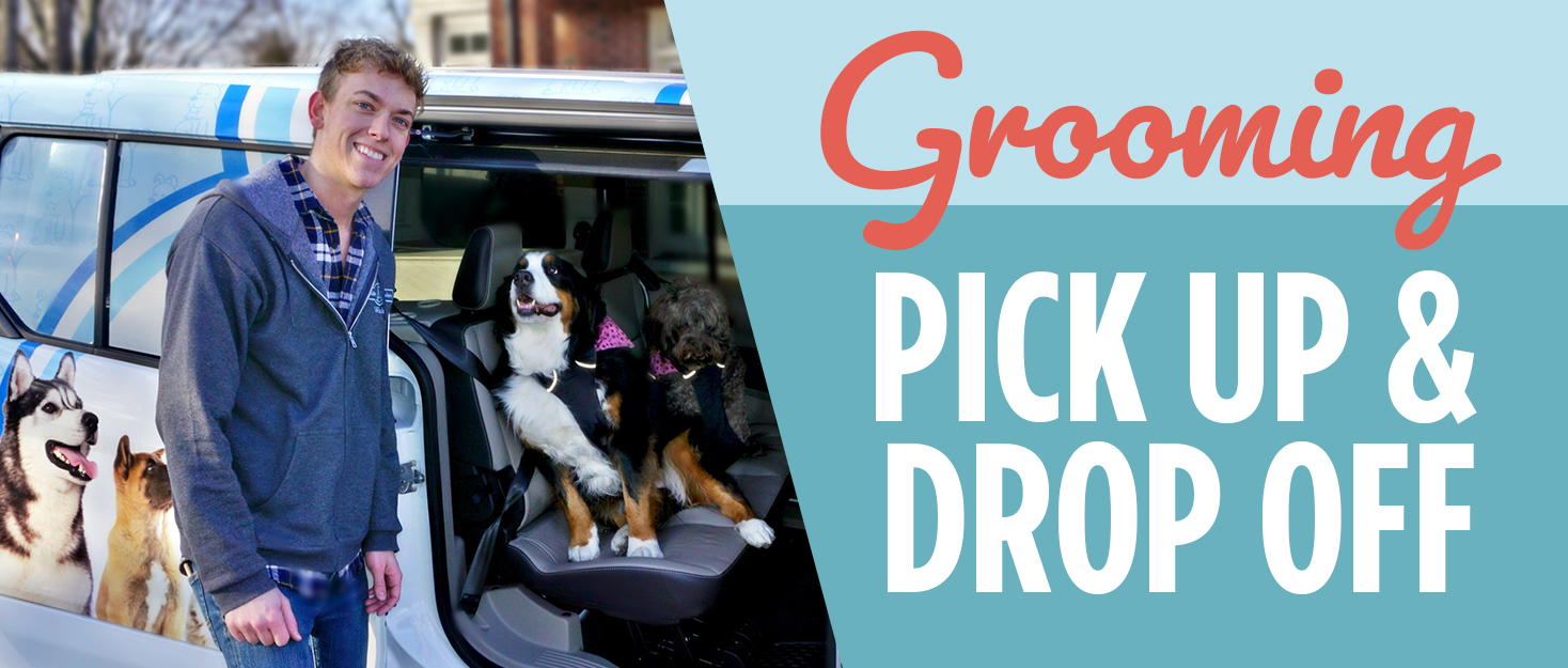 Brookside Barkery Grooming Pick Up & Drop Off