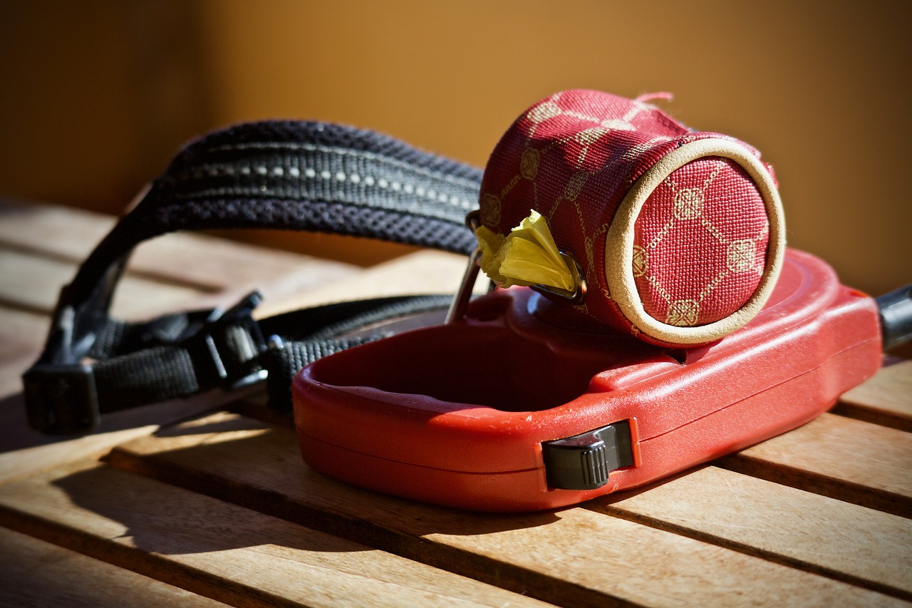 8 Reasons Not to Use a Retractable Leash