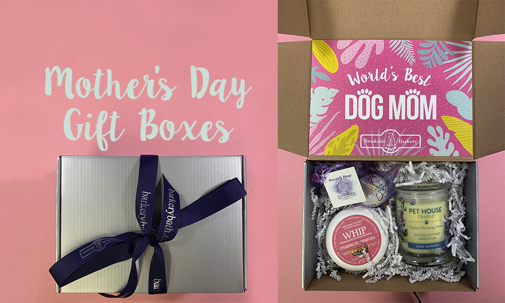 Something Special for the Dog Mom in Your Life