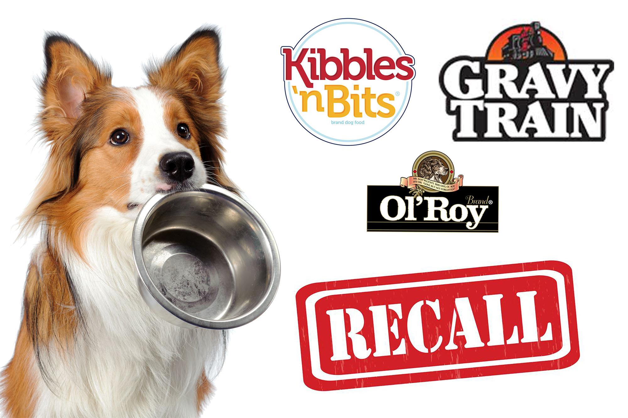 Dog Foods Pulled After Investigation Finds Euthanasia Drug